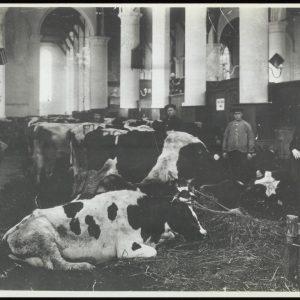 Grote_Kerk_Interieur_0049