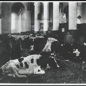 Grote_Kerk_Interieur_0050